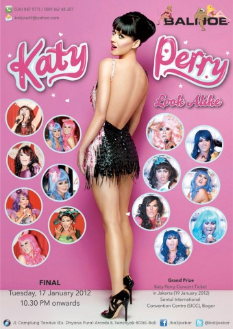 katy-perry-look-alike-finalll